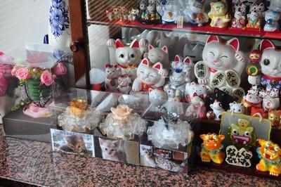20140808_kittens001