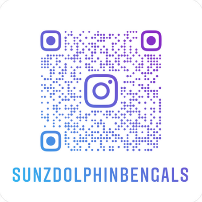 Sunzdolphinbengals_nametag_20210712170701